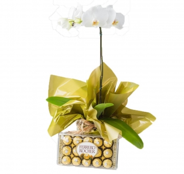 Orqu�dea e Ferrero Rocher - 1098